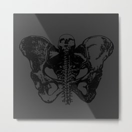 Untitled Moth Metal Print