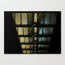 descending Canvas Print