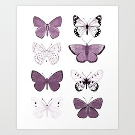 Butterflies Study no. 12 - butterflies, butterfly art, mauve butterflies, purple butterflies, butterfly art, mauve, butterfly stickers Art Print