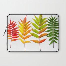 Rainbow Sumac for Autumn in Canada Laptop Sleeve