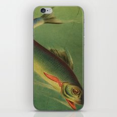 Stained Glass Fish - 2 iPhone & iPod Skin