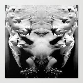 symmetry \\ #DEMON Canvas Print