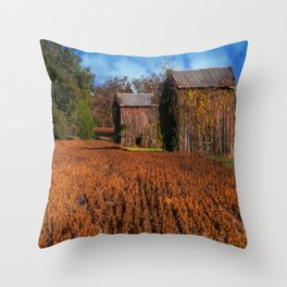 Change of Time Throw Pillow