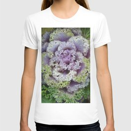Little Cabbage T-shirt