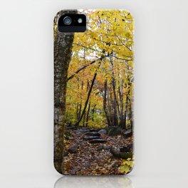 Woods 3 iPhone Case