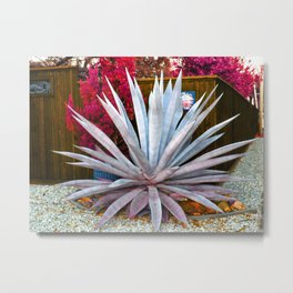 The Agave Metal Print