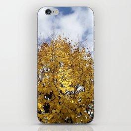 Golden View iPhone Skin