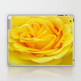 Beautiful Yellow Rose Closeup Laptop & iPad Skin
