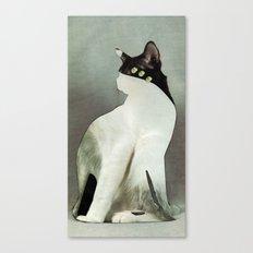 KatzenJammer 9 Canvas Print