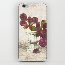 Urn With Leaves iPhone Skin