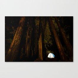 Camp at Big Basin Canvas Print