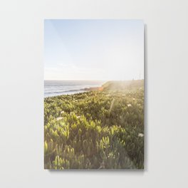 Summer sunset in Santa Cruz Metal Print