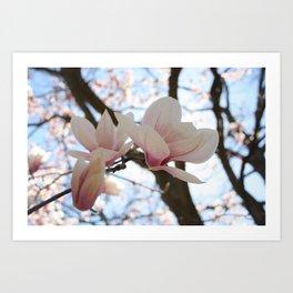 Blossom me pink Art Print