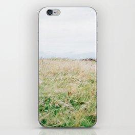 Wild Wind iPhone Skin