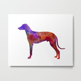 Hungarian Greyhound in watercolor Metal Print