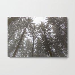 Zauberwald - Fog in the Magic Forest 3 Metal Print