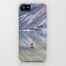 Psychodelic Birdwalk iPhone Case