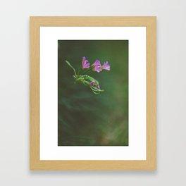 Lonely Flowers 01 Framed Art Print