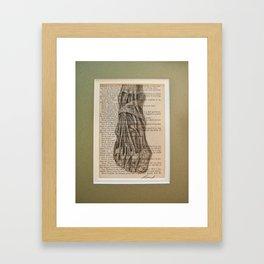 anatomical foot  Framed Art Print