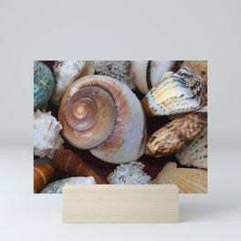 She Sells Sea Shells Mini Art Print