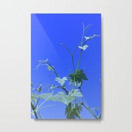 Tendrils Metal Print