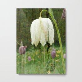 Fritillaria flower on wood Metal Print