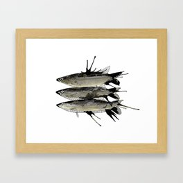 Sardin Framed Art Print