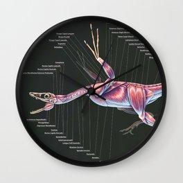 Microraptor Gui Muscle Study Wall Clock