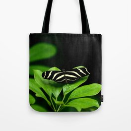 Zebra Longwing Butterfly on green leaves Tote Bag