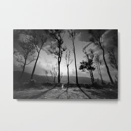 Ghostly trees and mountain roads Metal Print