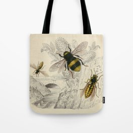 Naturalist Bee And Wasps Tote Bag