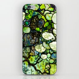 Louis Comfort Tiffany - Decorative stained glass 7. iPhone Skin