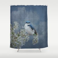 swallow Shower Curtains featuring Tree Swallow by TaLins