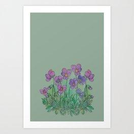tiny little violets Art Print