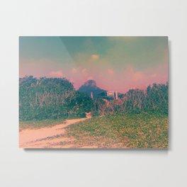 Coral Landscape Metal Print