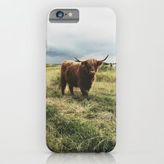 Landscape Bull iPhone 6s Slim Case