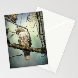 Quizzical Red-Tailed Hawk Stationery Cards