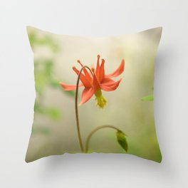Red Columbine Wildflower Flower Rainforest Northwest Spring Garden Wilderness Nature Outdoors  Throw Pillow