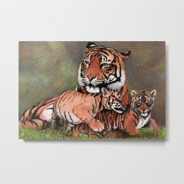 Tigers family Metal Print