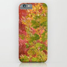Fall stroll  iPhone 6s Slim Case