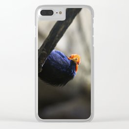 # 250 Clear iPhone Case
