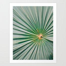 Palm up close | Botanical finea art photography print | Shades of green Art Print
