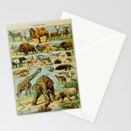 Mammiferes-Mammals Vintage Scientific Illustration French Language Encyclopedia Lithographs Stationery Cards