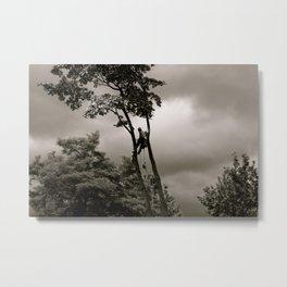 The Arborist Metal Print
