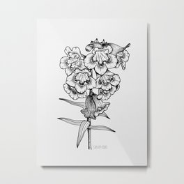 Penstemon Metal Print