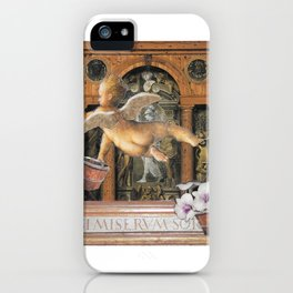 Spring Cleaning iPhone Case