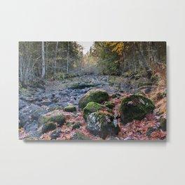 Dry watercourse with big mossy rocks Metal Print