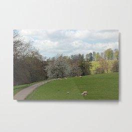 Fawsley Countryside Northamptonshire Metal Print