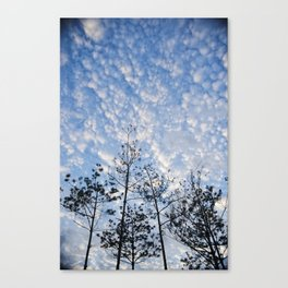 A beautiful Korean sky Canvas Print