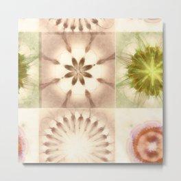 Cagelings Proportion Flowers  ID:16165-120212-27450 Metal Print